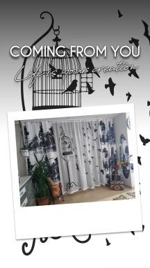 Bird Cage and Free Birds Tulle Curtain 2 Sashes