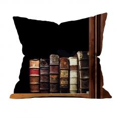 Books-2 Cushion