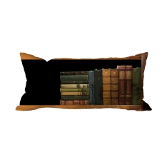 Books-1 Cushion