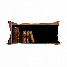 Books-10 Cushion