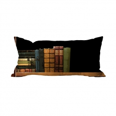 Books-11 Cushion