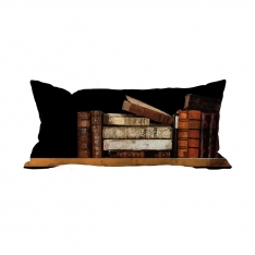 Books-12 Cushion