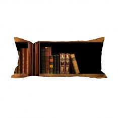 Books-14 Cushion