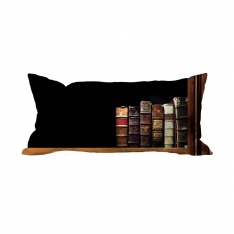 Books-15 Cushion