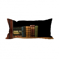 Books-16 Cushion