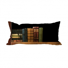 Books-3 Cushion
