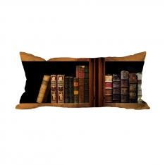 Books-4 Cushion