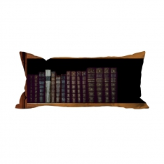 Books-5 Cushion