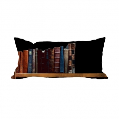 Books-7 Cushion