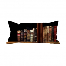 Books-9 Cushion