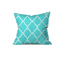 Charming Turquoise Cushion