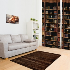 Bookshelf Combine Printed Carpet